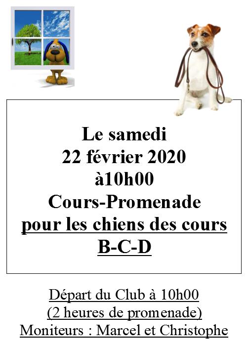 Cours promenade 20200222